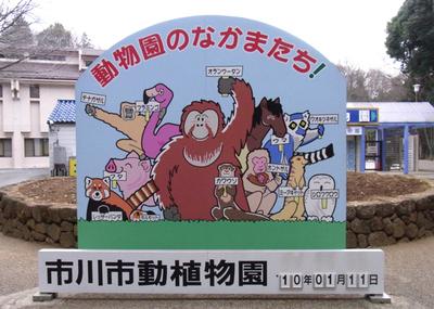 20100111ichikawa_r0012121