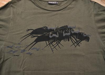 20100503kenya_t_shirt_d31_9802