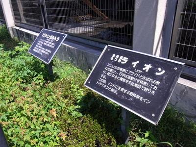 Kofuyuki_r0013690