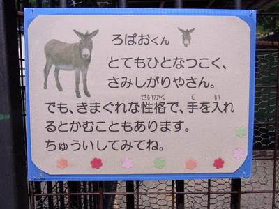 Kofuyuki_r0013695
